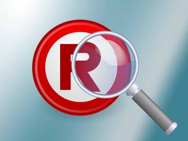 В России стартовал информационно-поисковый сервис «Линкмарк»